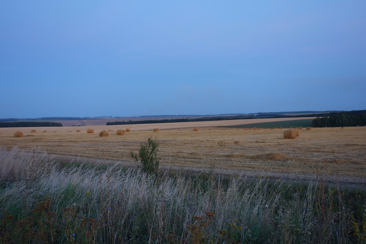 поля и перелески Щекинского уезда. Рулоны сена