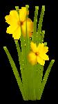 FlyPixelSt_gardenofplenty_flower_cluster2.png
