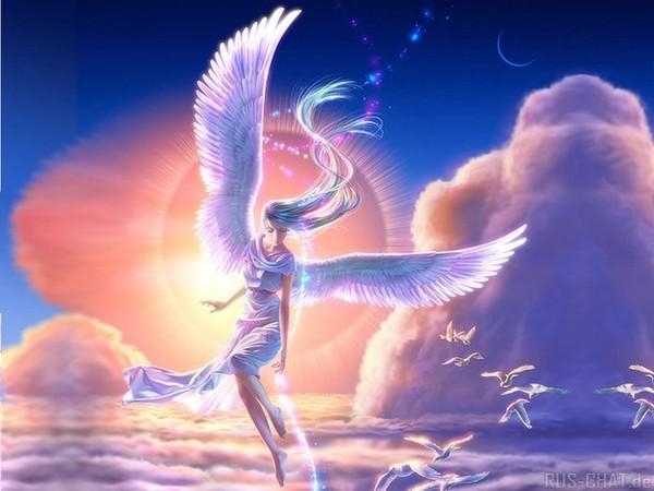 крылья2.jpg