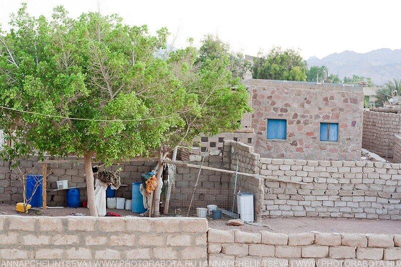 Дахаб, Синай, dahab.su