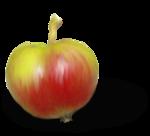 natali_design_apple2-sh1.png