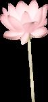 Scrap - Petite Elyne 0_73b87_d15975bf_S