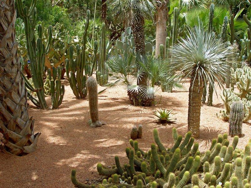 Сад Мажореля (Марокко)