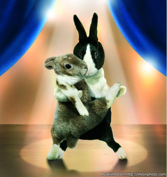 """Календарь """"Танцующие зайчики-2012?"""