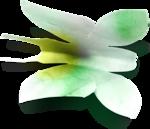 Весенний сад (33).jpg