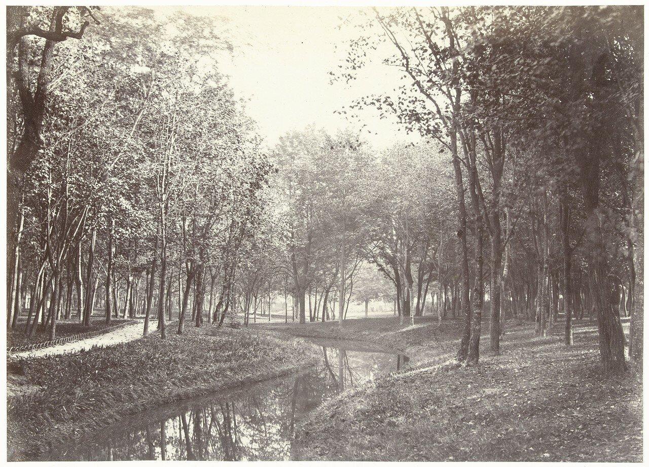 1855. В Булонском лесу