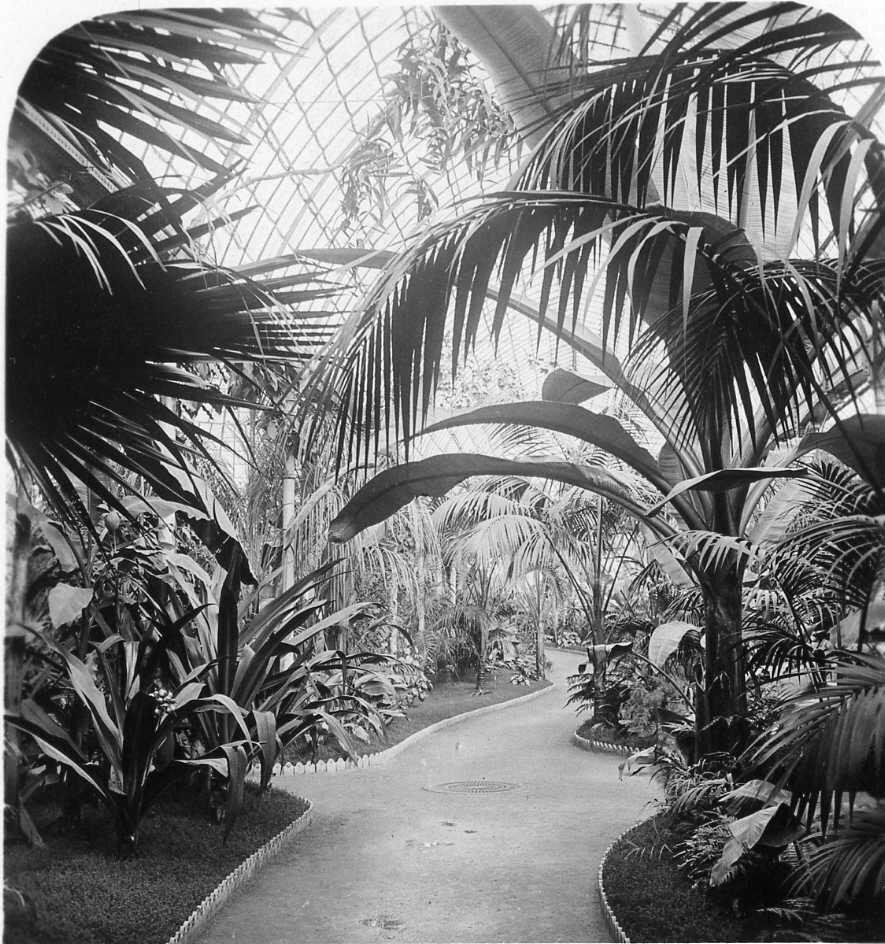 1906. Сад Аклиматасьон