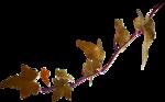 осенние тропинки (63)