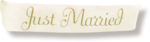 NLD Just Married Banner sh.png
