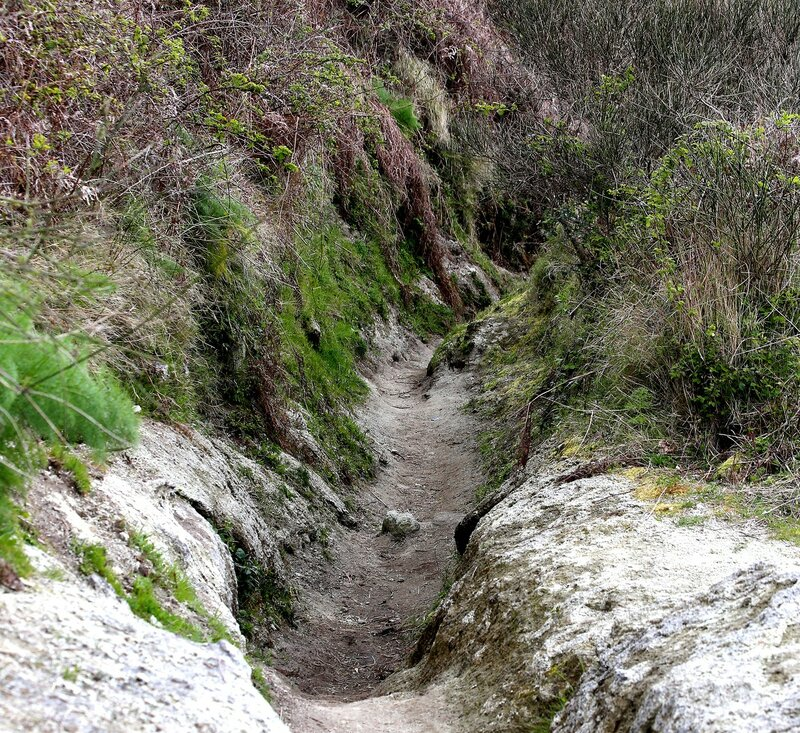 Ischia, Mount Epomeo. Mountain path