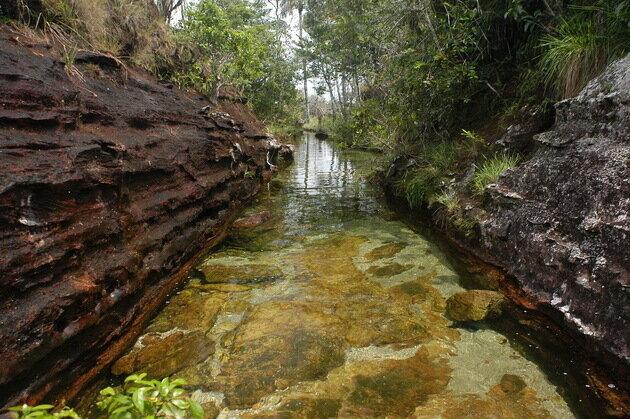 Река Каньо Кристалес. Колумбия
