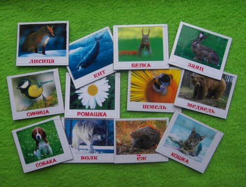 Развивающий коврик для детей Моулвиль... карточки Домана