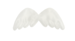 natali_design_dream_wings2.png