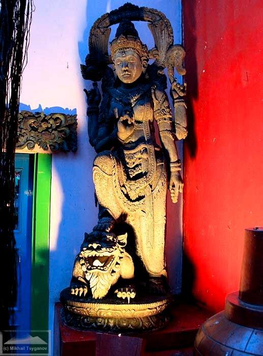Лара Джонгранг со львом