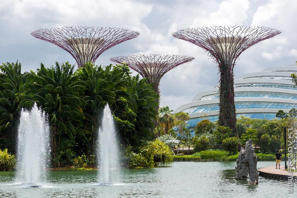 Singapore (96).jpg