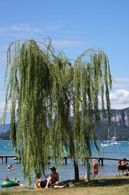 Озеро Гарда. Бардолино | Wines&Places: http://winesandplaces.wordpress.com/2011/11/08/озеро-гарда-бардолино-2