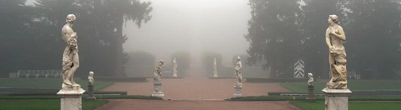 Царское Село. Туман в Екатерининском парке