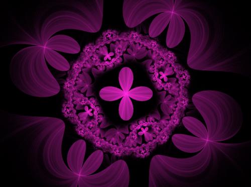 Урок Apophysis 7x создание фрактальных цветов