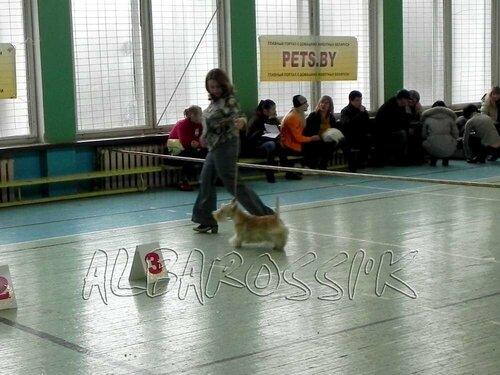 http://img-fotki.yandex.ru/get/5413/10248733.a/0_a55b2_2bee7569_L.jpg
