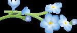 цветы-(254).png