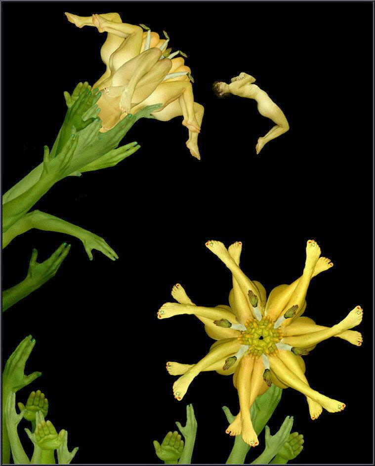 Цветы от тела