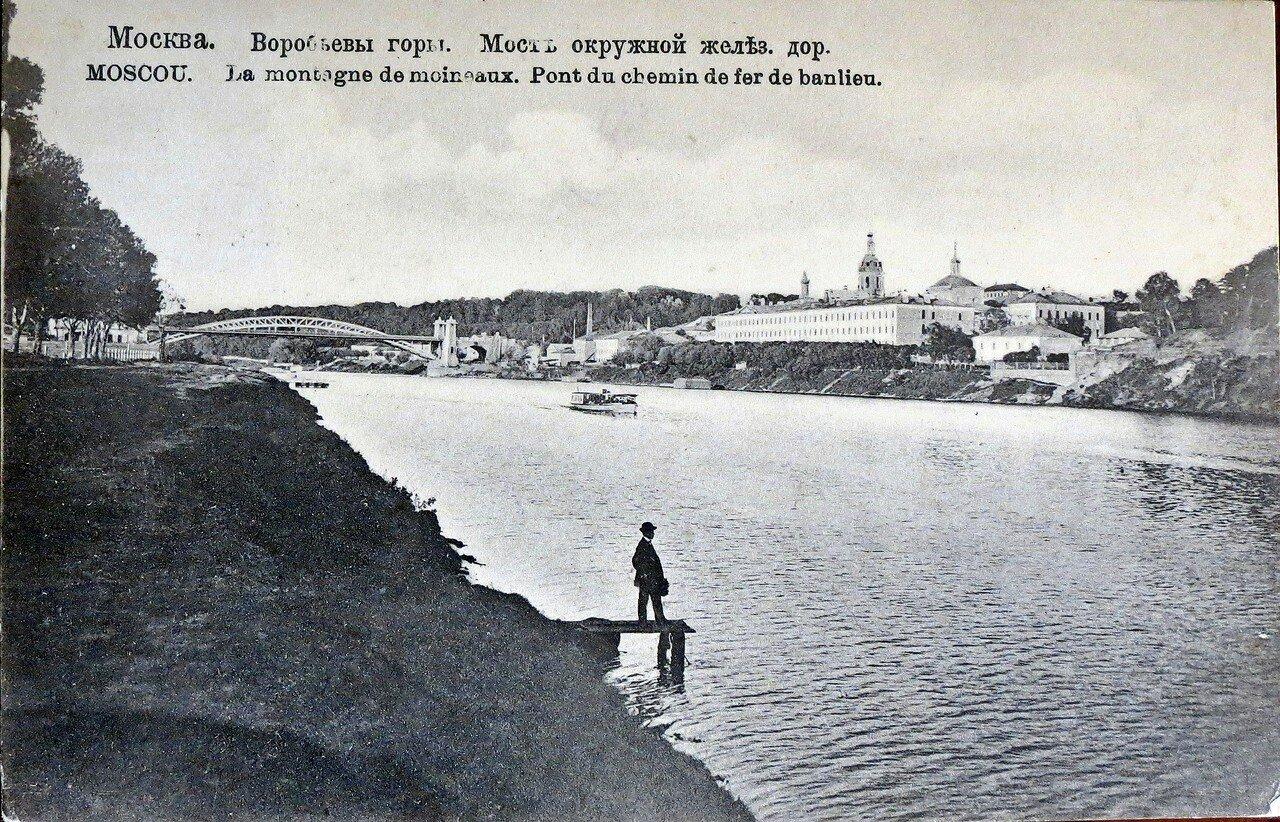 Окрестности Москвы. Воробьевы горы. Мост московской окружной дороги