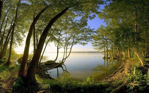 Почитание природы в родной вере