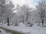 Снежный наряд