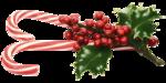 Joelle_ChristmasPast_Ell36.png