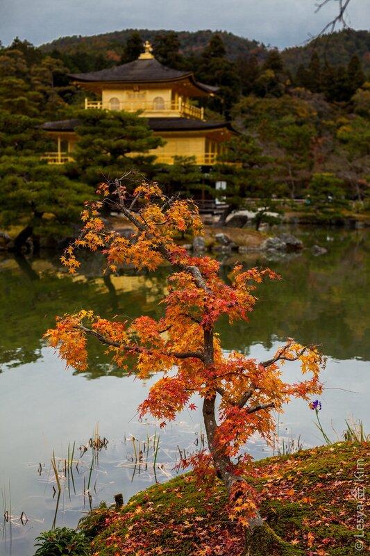 Япония (фото отчет, осень 2012)