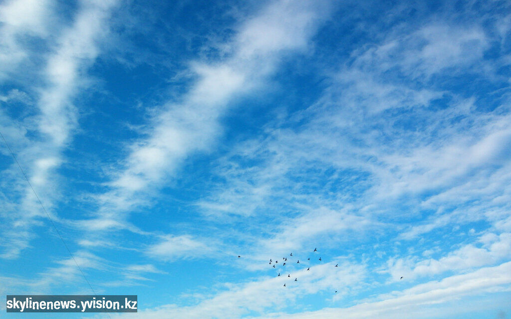 Небо и голуби (Samsung WB 2000)