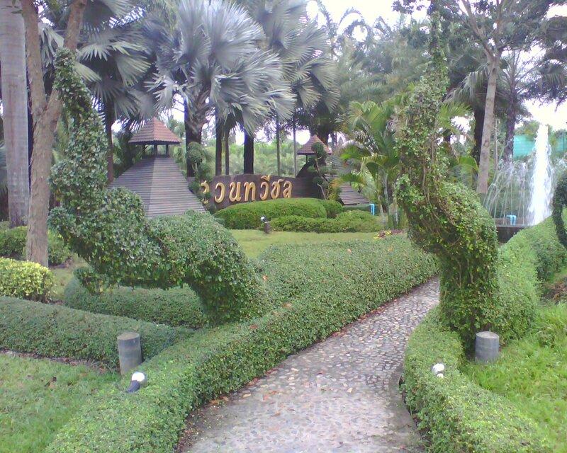 Достопримечательности Чиангмая - ботанический сад
