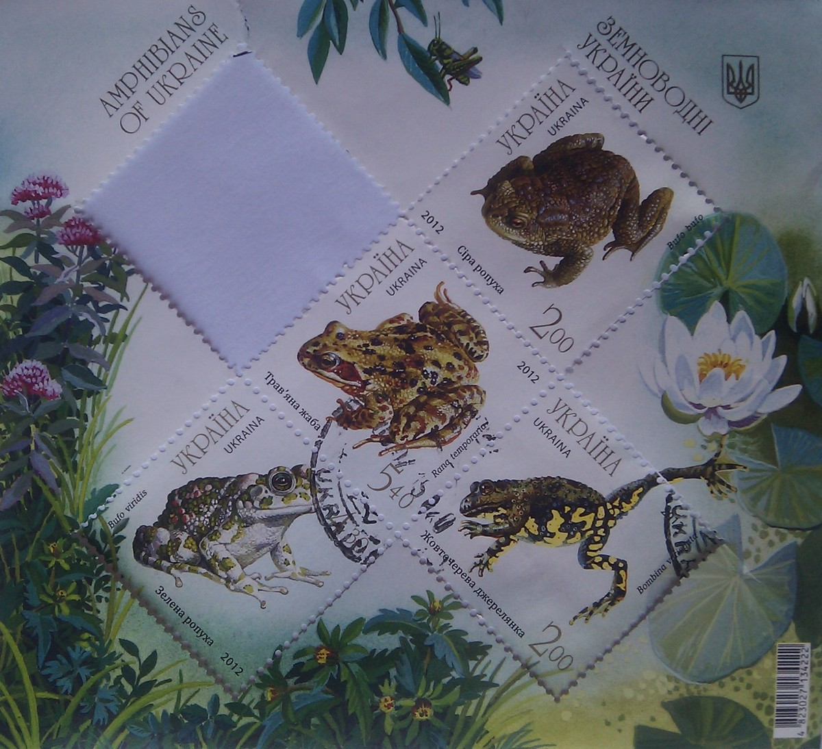 2012 N1262-1266 (b107) блок Земноводные Лягушки Фауна 4штуки