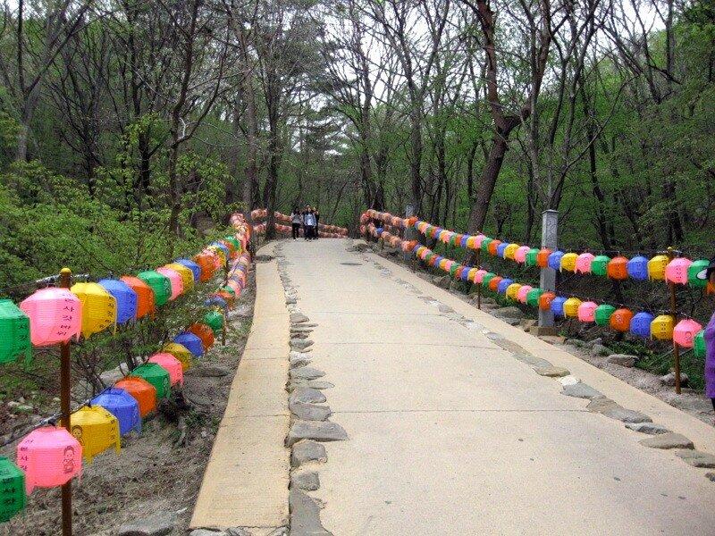 Дорога к Катпави