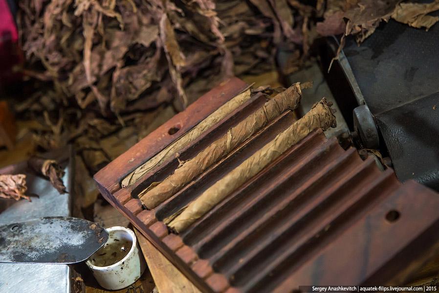 7. Затем наступает этап финального оборачивания сигары и обрезки.