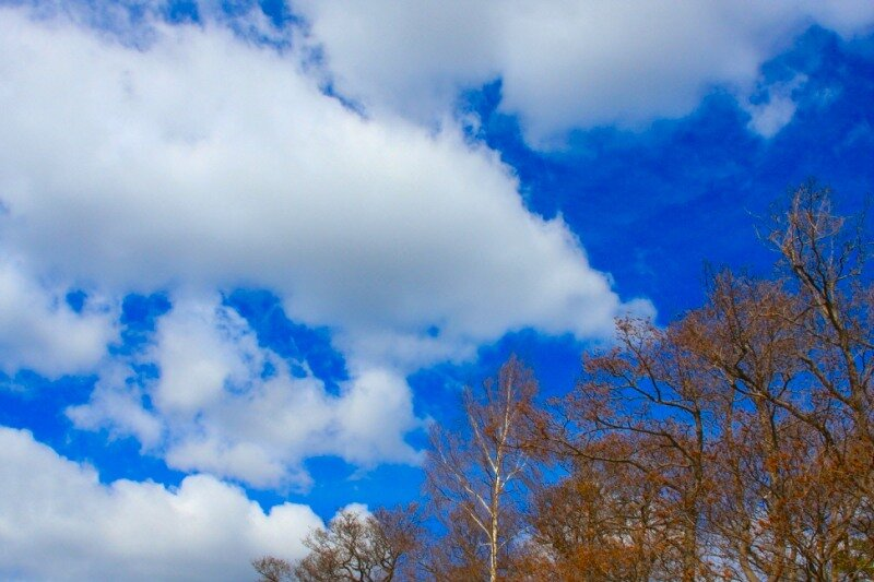 фото весеннего неба несколько недель