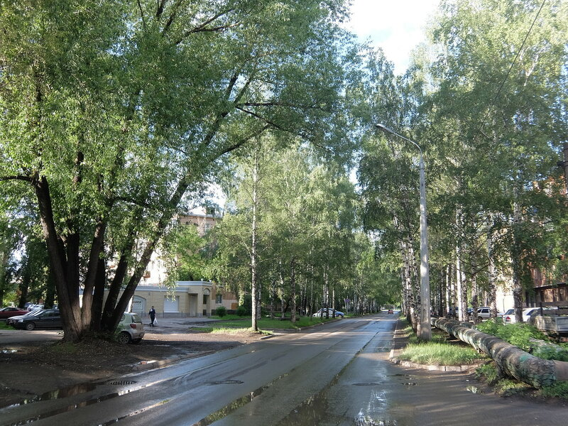 Улица Сеченова