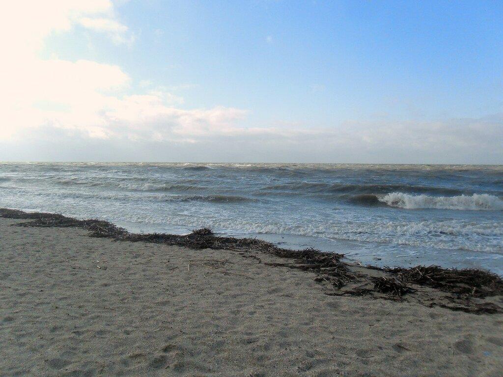 У моря ... SAM_5740.JPG