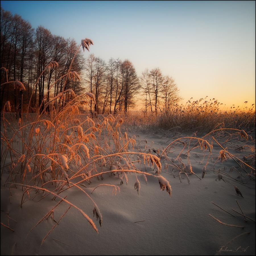 Пейзажи фотографа Анатолия Соколова