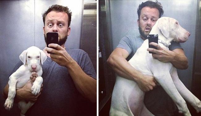Дэйв Майнерт спас щенка отнерадивых заводчиков, нонезнает, как долго тот проживет, поэтому ф