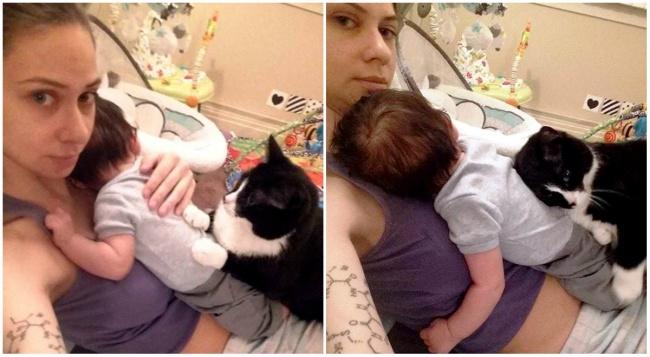 Кстати, Панда неединственная кошка вдоме, которая обожает малыша. Так что, умаленького Шона сразу