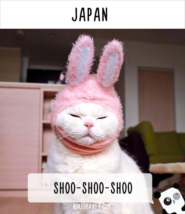 Япония — шу-шу-шу (кошка «неко»).