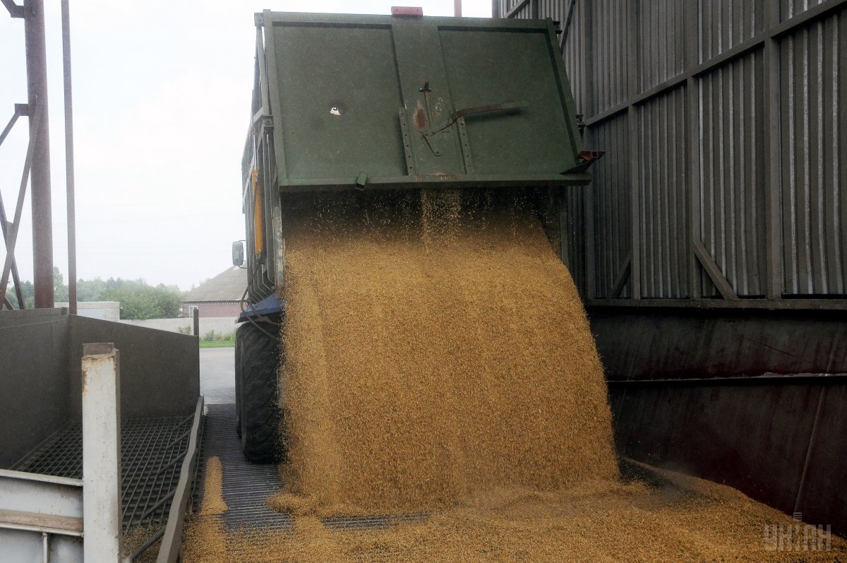 США оценивает РФ как мирового лидера поэкспорту пшеницы