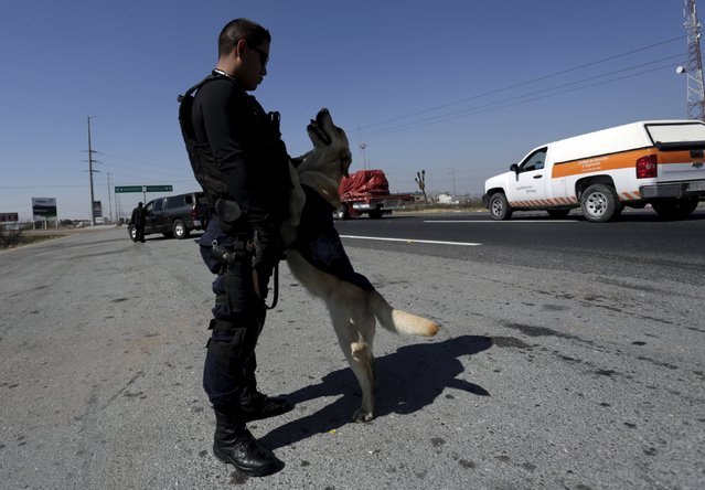 A police officer and his re-trained dog wait at a security checkpoint in Saltillo, Mexico March 4, 2