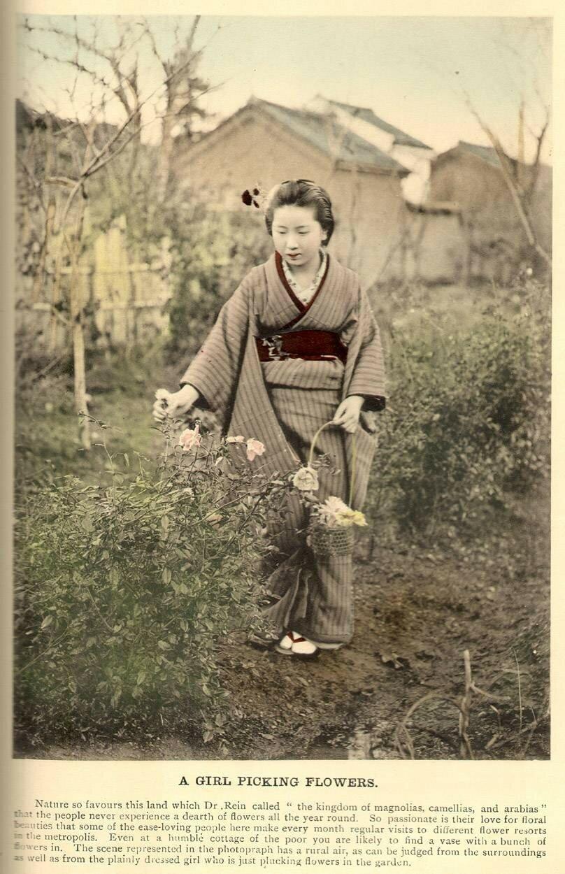 Девушка собирает цветы