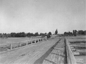 Ташкент (Сырдарьинская область). Арба на деревянном мосту