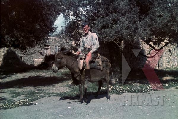 stock-photo-german-luftwaffe-flak-soldier-riding-donkey-in-village-kreta-crete-1942-12891.jpg