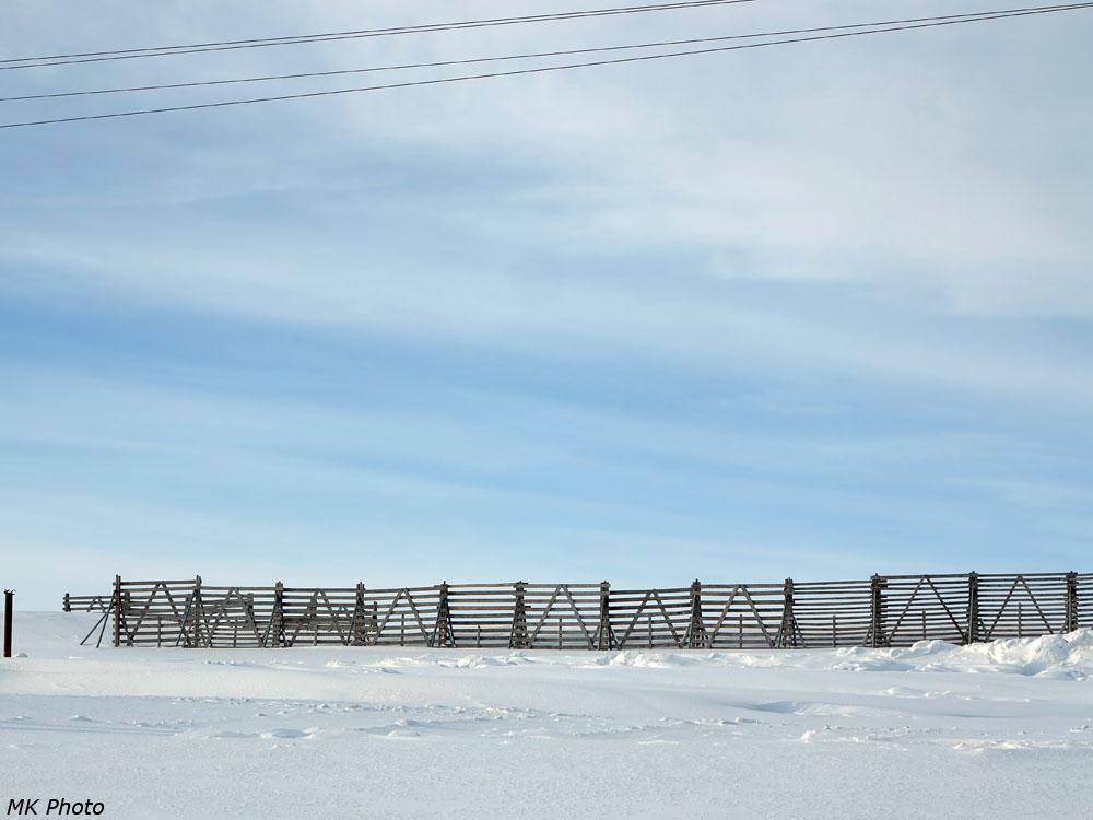 Забор от снежных заносов