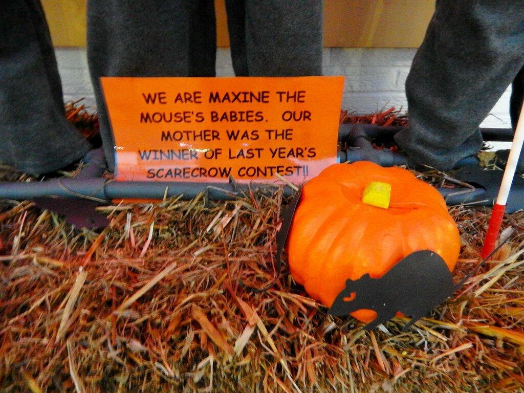 Halloween Yard Display