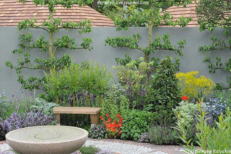 A modern Apothecary Garden (17).jpg